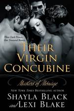 Their Virgin Concubine (Masters of Ménage #3)